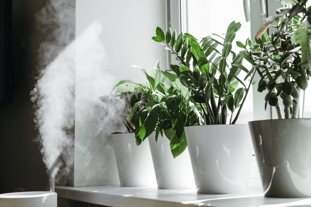 How to Select the Right Air Purifier